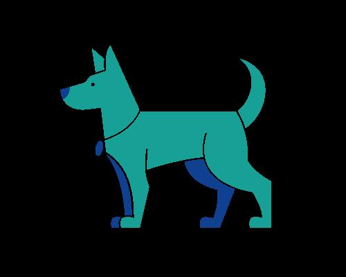 Tipps für den Hund