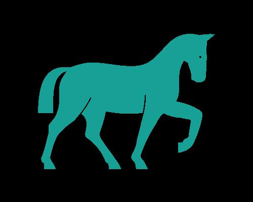 Tipps für Pferde